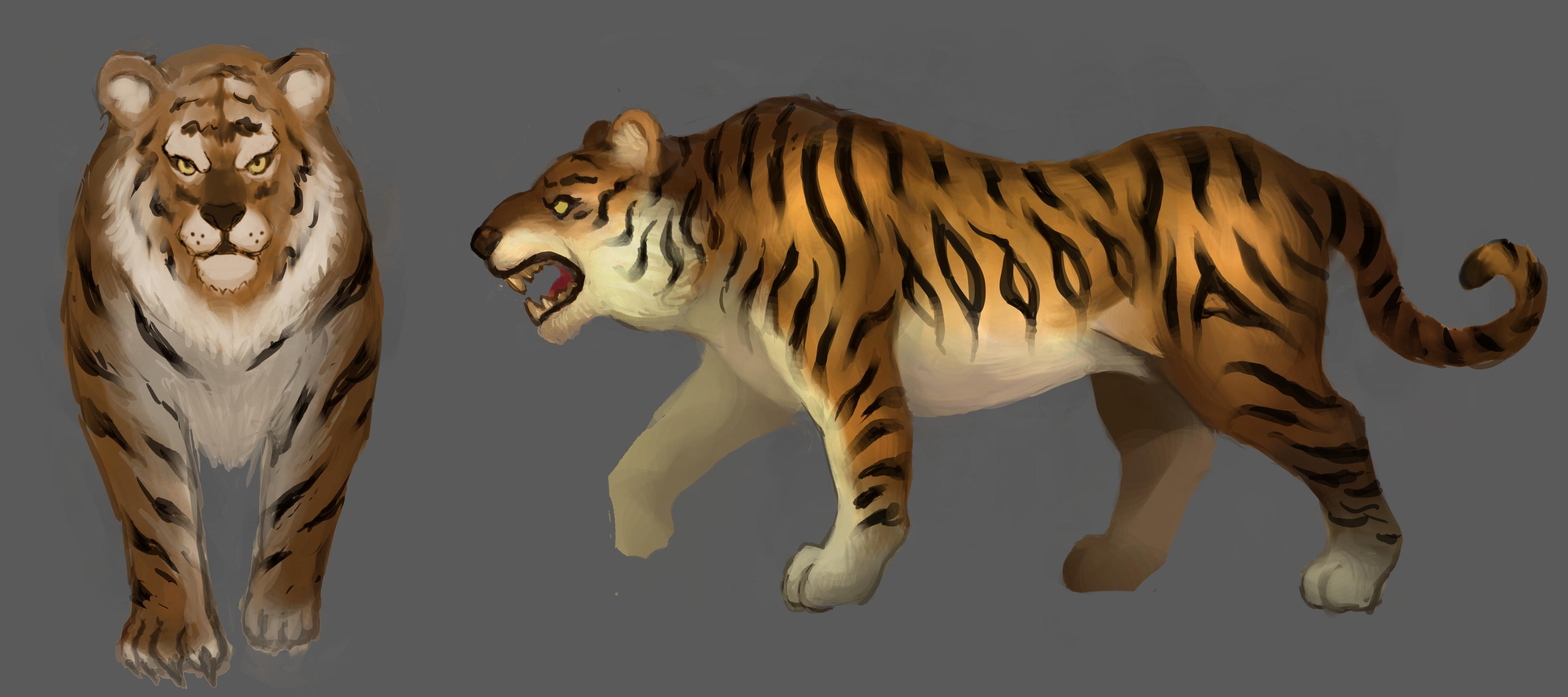 老虎画法步骤图解